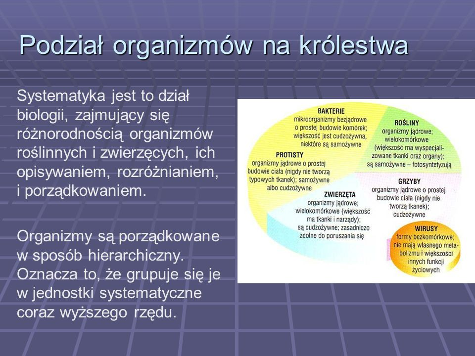 Podział organizmów na królestwa Systematyka jest to dział biologii, zajmujący się różnorodnością organizmów roślinnych i zwierzęcych, ich opisywaniem,