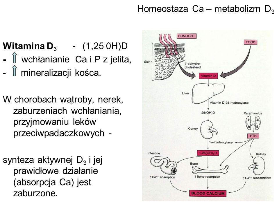 Homeostaza Ca – metabolizm D 3 Witamina D 3 - (1,25 0H)D - wchłanianie Ca i P z jelita, - mineralizacji kośca. W chorobach wątroby, nerek, zaburzeniac
