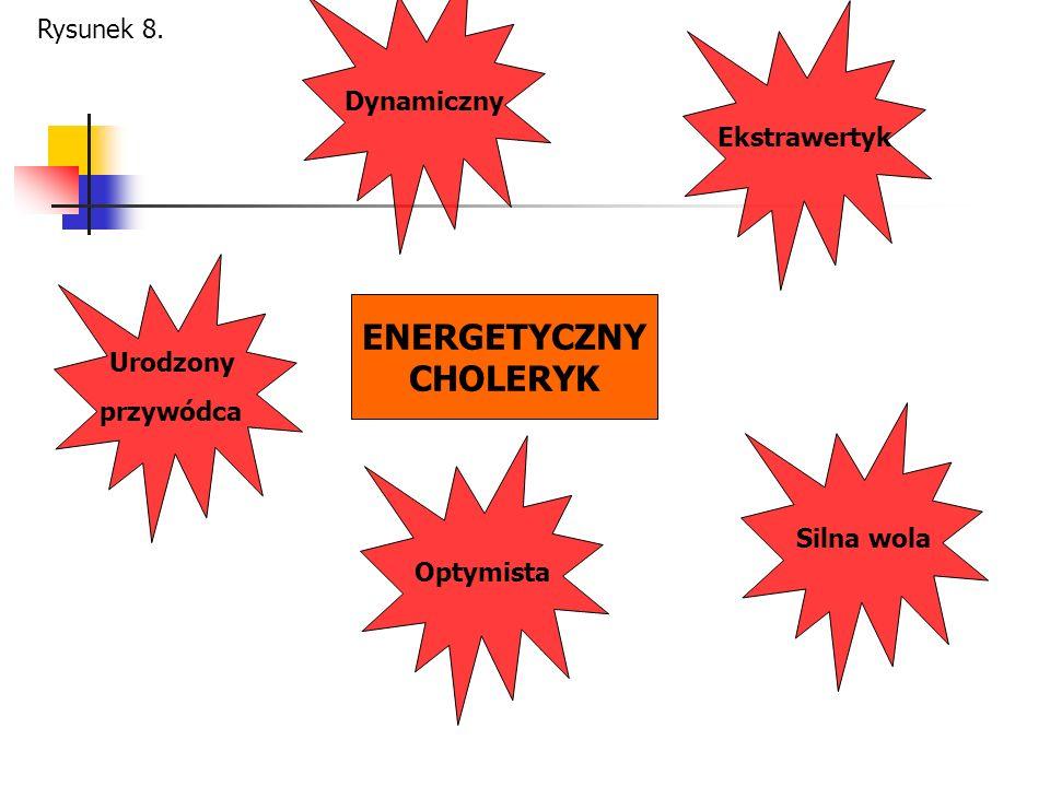 ENERGETYCZNY CHOLERYK Ekstrawertyk Silna wola Dynamiczny Urodzony przywódca Optymista Rysunek 8.