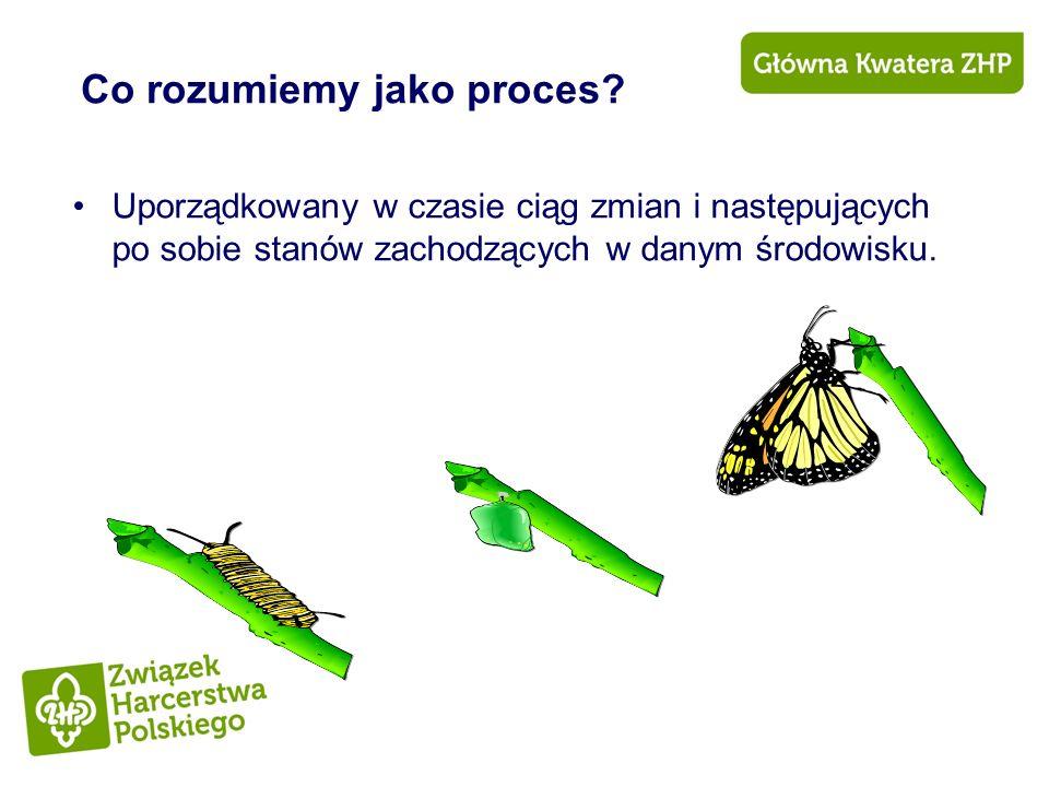 Co rozumiemy jako proces? Uporządkowany w czasie ciąg zmian i następujących po sobie stanów zachodzących w danym środowisku.