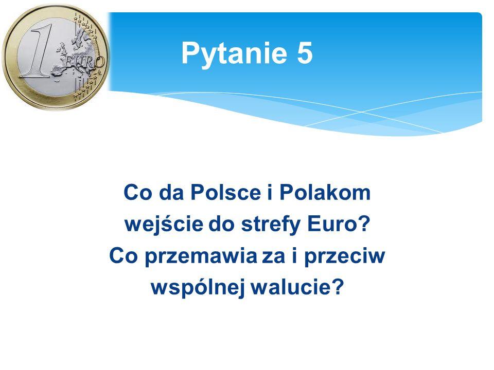 Co da Polsce i Polakom wejście do strefy Euro. Co przemawia za i przeciw wspólnej walucie.