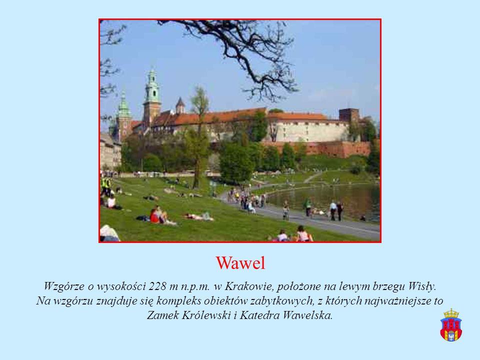 Wawel Wzgórze o wysokości 228 m n.p.m. w Krakowie, położone na lewym brzegu Wisły. Na wzgórzu znajduje się kompleks obiektów zabytkowych, z których na
