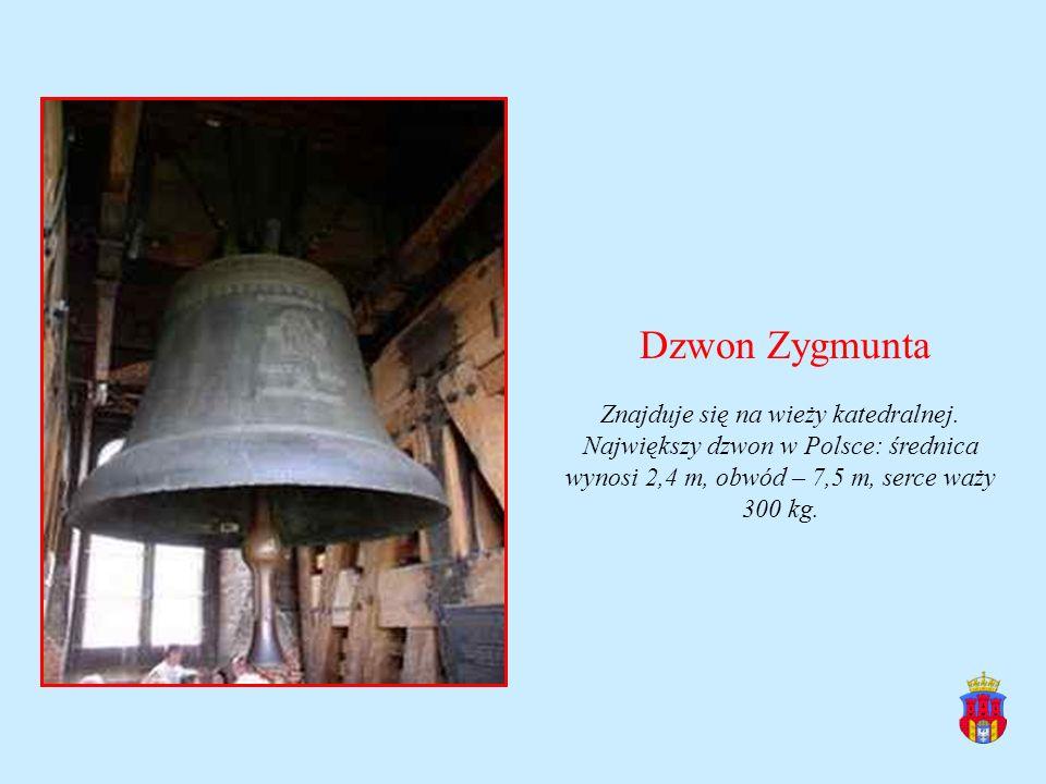 Dzwon Zygmunta Znajduje się na wieży katedralnej. Największy dzwon w Polsce: średnica wynosi 2,4 m, obwód – 7,5 m, serce waży 300 kg.