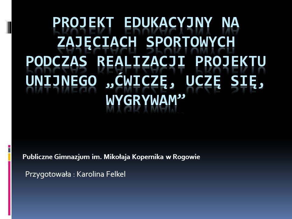 Przygotowała : Karolina Felkel Publiczne Gimnazjum im. Mikołaja Kopernika w Rogowie