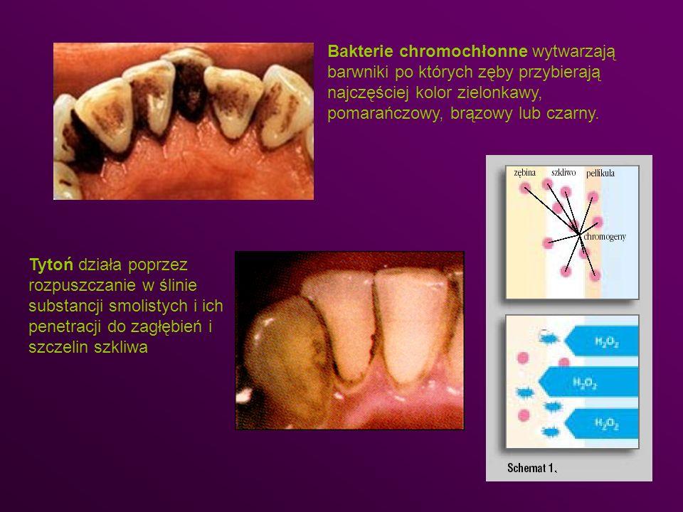 Bakterie chromochłonne wytwarzają barwniki po których zęby przybierają najczęściej kolor zielonkawy, pomarańczowy, brązowy lub czarny. Tytoń działa po