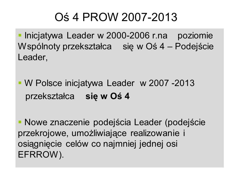 18 Oś 4 PROW 2007-2013 Inicjatywa Leader w 2000-2006 r.na poziomie Wspólnoty przekształca się w Oś 4 – Podejście Leader, W Polsce inicjatywa Leader w 2007 -2013 przekształca się w Oś 4 Nowe znaczenie podejścia Leader (podejście przekrojowe, umożliwiające realizowanie i osiągnięcie celów co najmniej jednej osi EFRROW).
