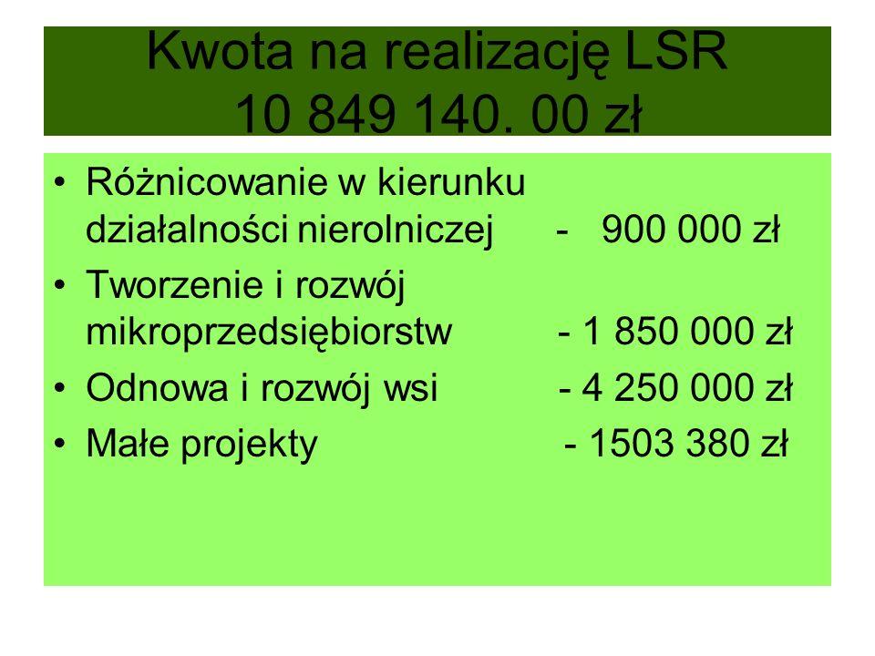 Kwota na realizację LSR 10 849 140.
