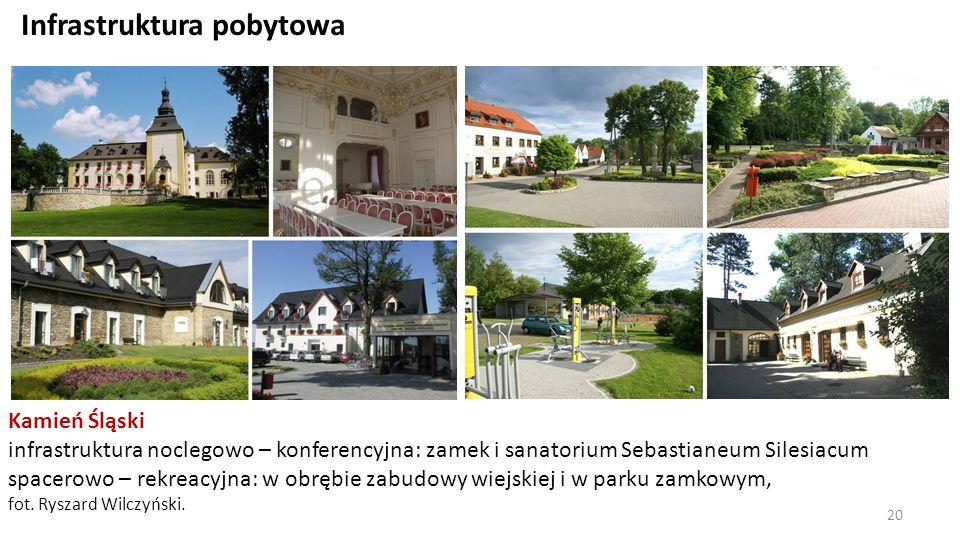 Infrastruktura pobytowa Kamień Śląski infrastruktura noclegowo – konferencyjna: zamek i sanatorium Sebastianeum Silesiacum spacerowo – rekreacyjna: w