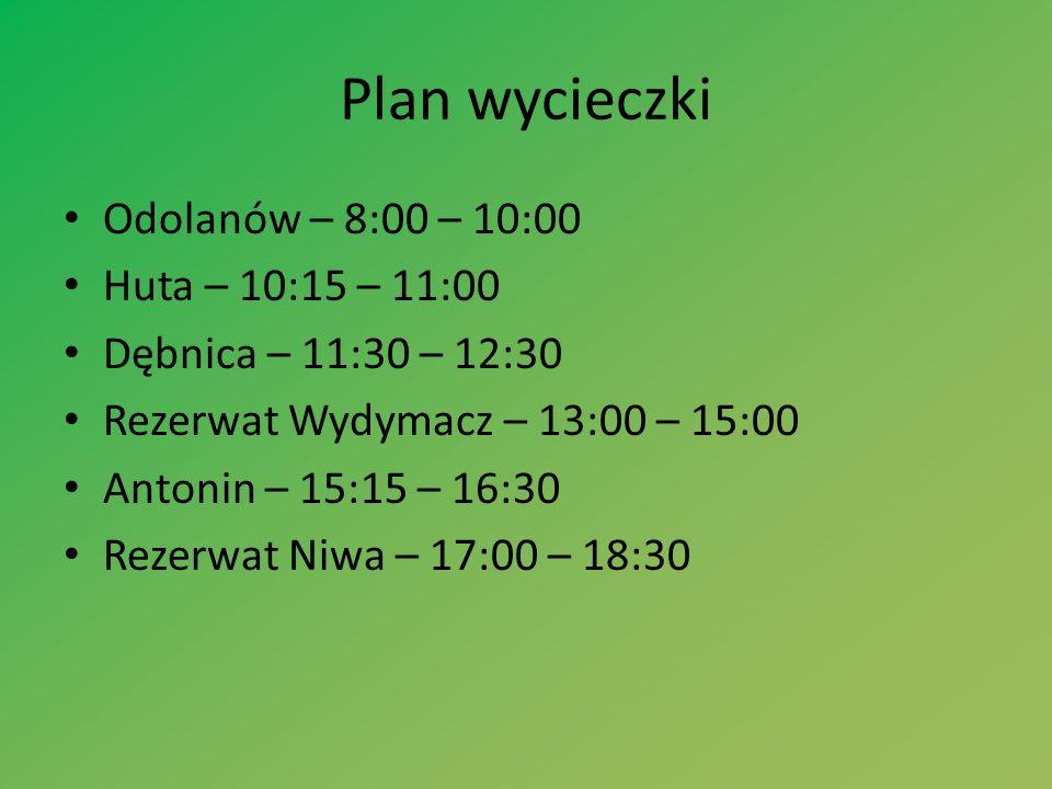 Plan wycieczki Odolanów – 8:00 – 10:00 Huta – 10:15 – 11:00 Dębnica – 11:30 – 12:30 Rezerwat Wydymacz – 13:00 – 15:00 Antonin – 15:15 – 16:30 Rezerwat