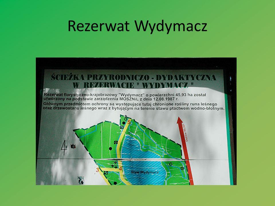 Rezerwat Wydymacz