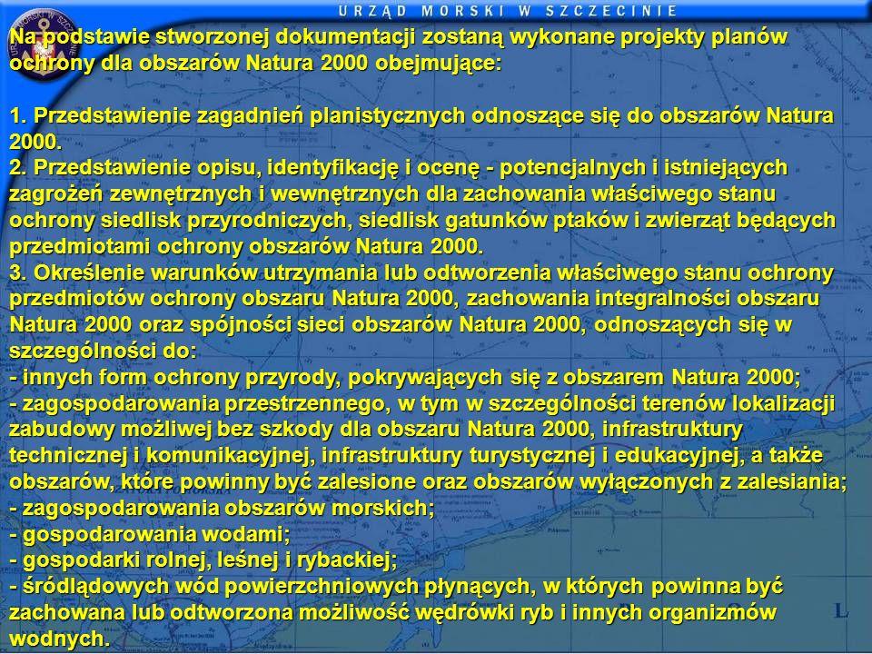 Na podstawie stworzonej dokumentacji zostaną wykonane projekty planów ochrony dla obszarów Natura 2000 obejmujące: 1. Przedstawienie zagadnień planist
