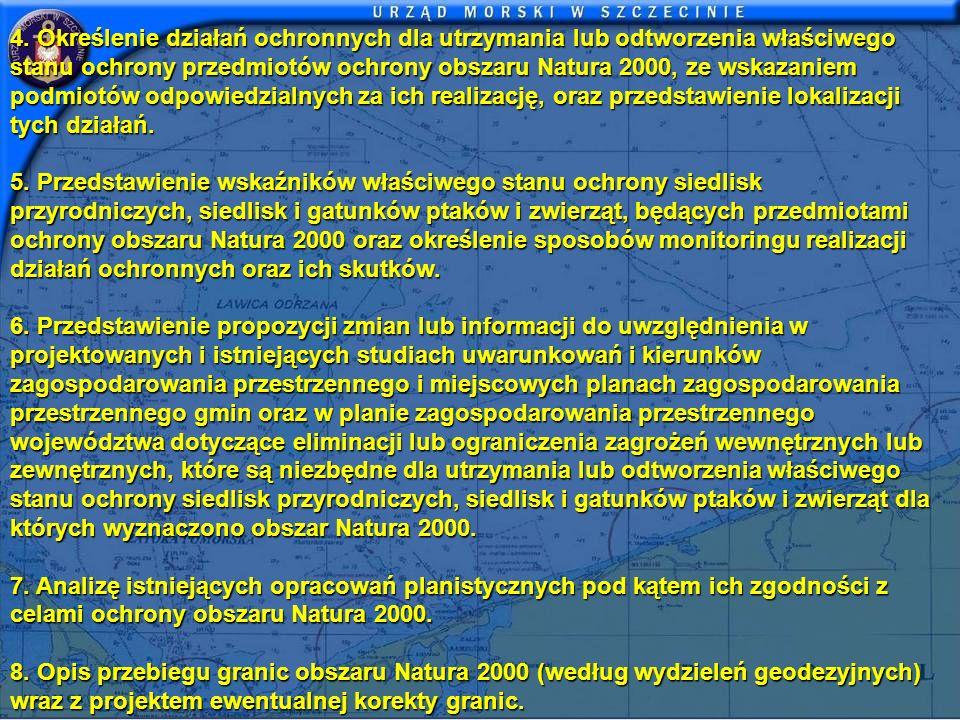 4. Określenie działań ochronnych dla utrzymania lub odtworzenia właściwego stanu ochrony przedmiotów ochrony obszaru Natura 2000, ze wskazaniem podmio