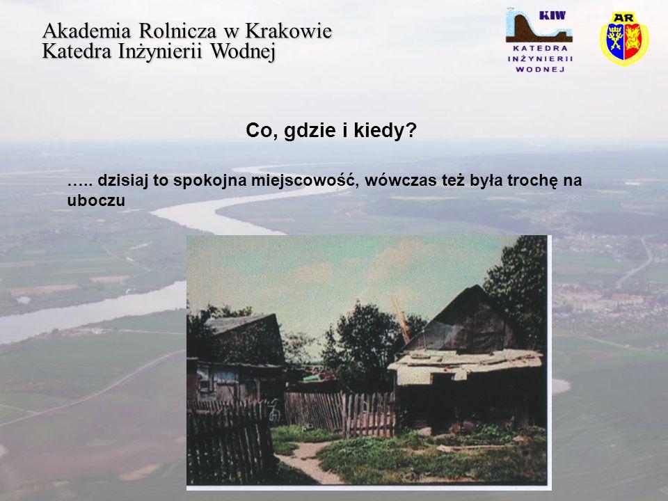 Akademia Rolnicza w Krakowie Katedra Inżynierii Wodnej Efekty Efektem manewrów była wielka bitwa w wyrównanych dla obu stron okolicznościach – obraz Matejki