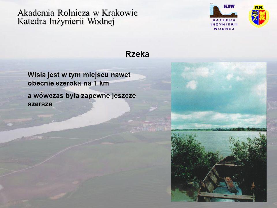 Akademia Rolnicza w Krakowie Katedra Inżynierii Wodnej Rzeka Badania aluwiów wykazują że wszędzie tutaj były wówczas niedostępne podmokłe tereny przykorytowej strefy zalewowej