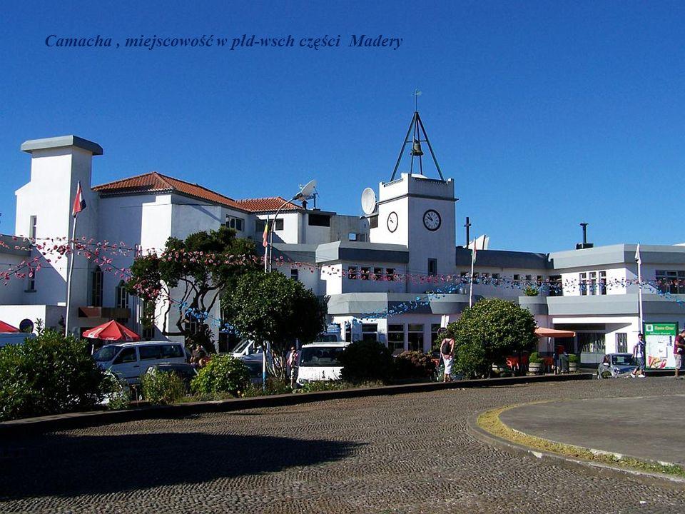 Camacha, miejscowość w płd-wsch części Madery