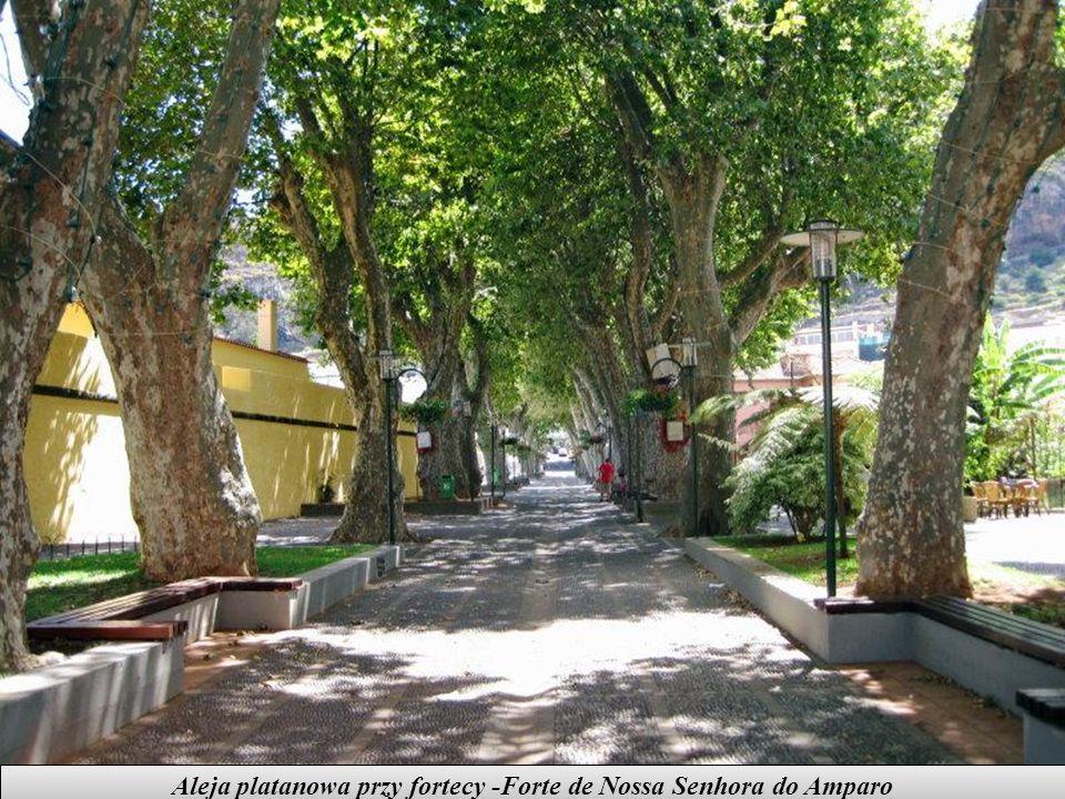 MACHICO jest starą, nadmorską miejscowością położoną na płd-wsch wybrzeżu wyspy. W tym miejscu wylądowali odkrywcy wyspy. Machico to pierwsza stolica