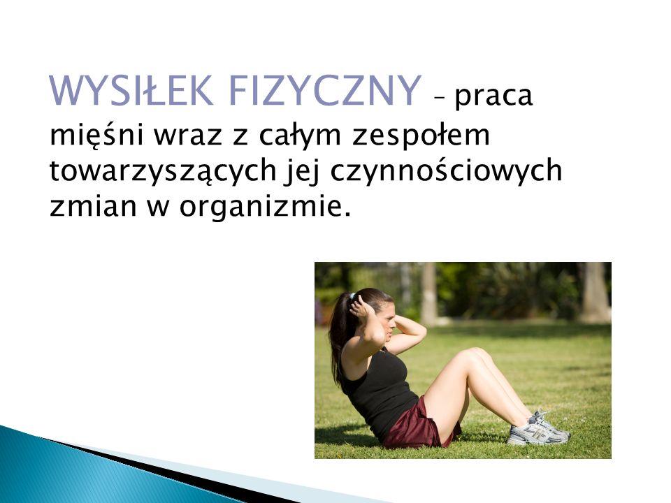 WYSIŁEK FIZYCZNY – praca mięśni wraz z całym zespołem towarzyszących jej czynnościowych zmian w organizmie.