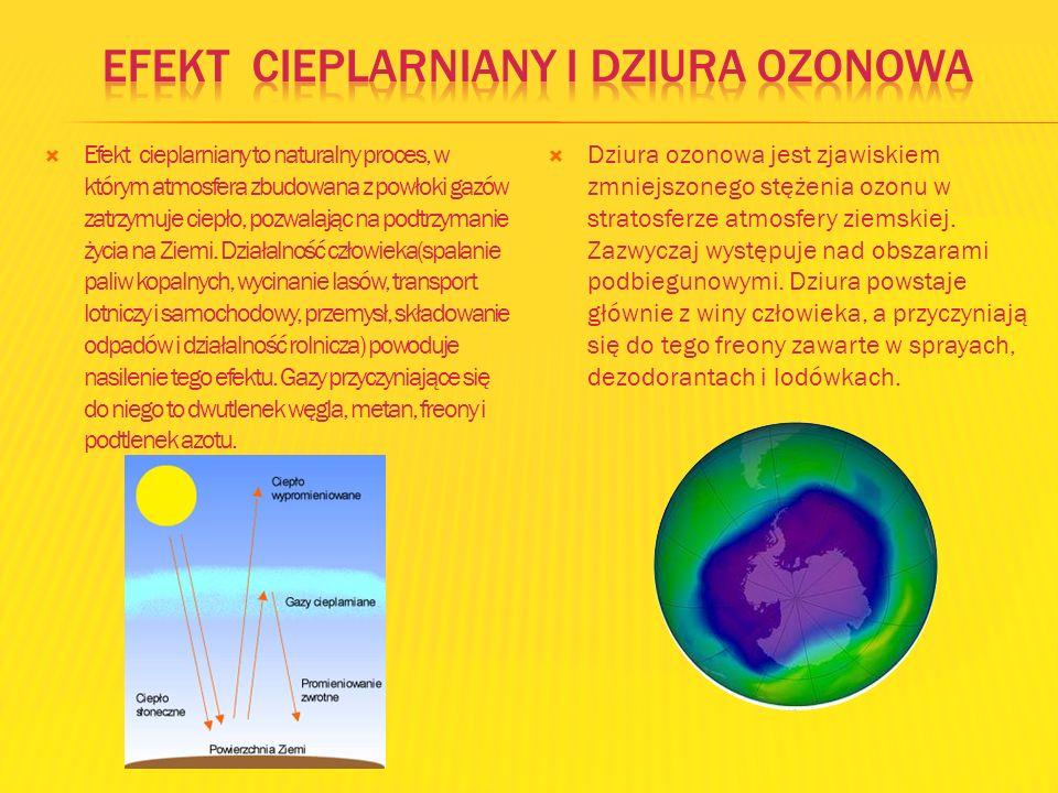 Efekt cieplarniany to naturalny proces, w którym atmosfera zbudowana z powłoki gazów zatrzymuje ciepło, pozwalając na podtrzymanie życia na Ziemi. Dzi
