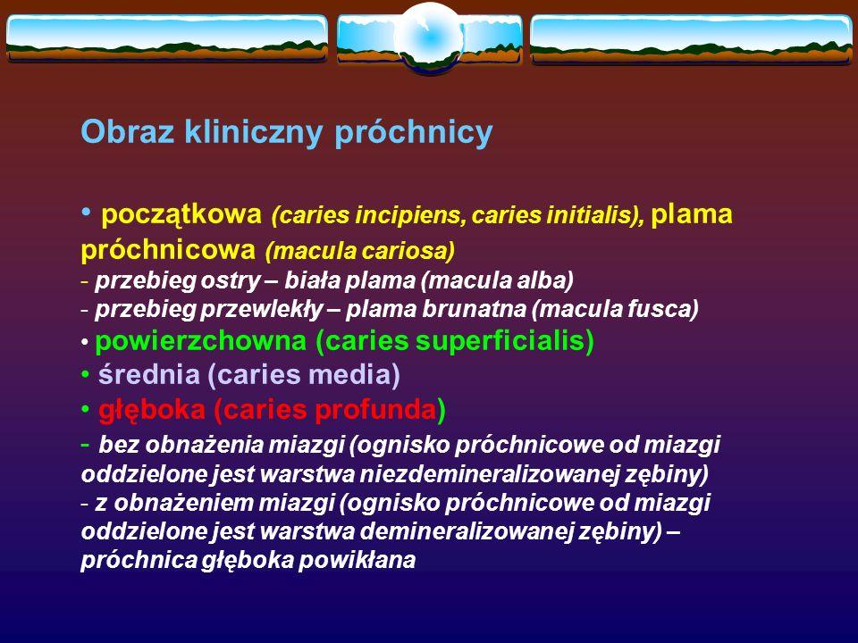 Obraz kliniczny próchnicy początkowa (caries incipiens, caries initialis), plama próchnicowa (macula cariosa) - przebieg ostry – biała plama (macula alba) - przebieg przewlekły – plama brunatna (macula fusca) powierzchowna (caries superficialis) średnia (caries media) głęboka (caries profunda) - bez obnażenia miazgi (ognisko próchnicowe od miazgi oddzielone jest warstwa niezdemineralizowanej zębiny) - z obnażeniem miazgi (ognisko próchnicowe od miazgi oddzielone jest warstwa demineralizowanej zębiny) – próchnica głęboka powikłana