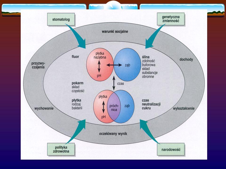 Czynniki obronne ślina ilość i skład białka antybakteryjne fluor, wapń, fosforany dietetyczne składniki ochronne Czynniki patologiczne bakterie S.