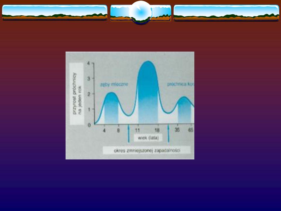 Próchnica Pocz ą tkowa 1 – warstwa przezroczysta Objętość porów 1%, a w szkliwie zdrowym 0,1%; utrata fazy mineralnej ok.