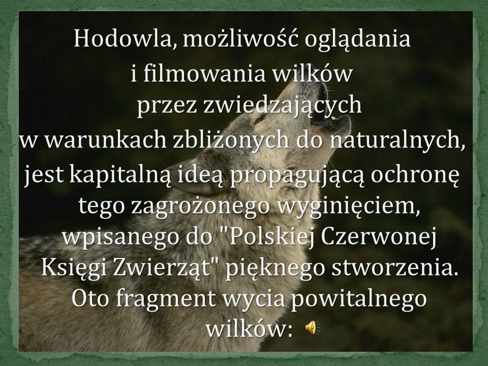 Terenowa Stacja Doświadczalna Katedry Zoologii Akademii Rolniczej w Poznaniu (7,70 km). Stacja Doświadczalna w Stobnicy powstała w 1974r. na bazie był