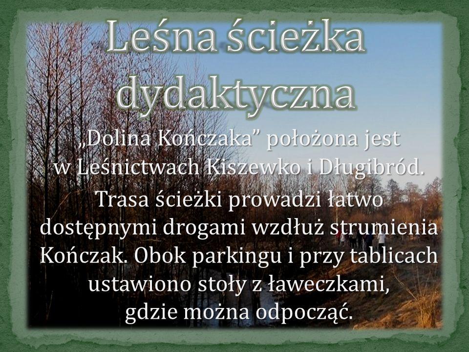 Dojazd: autobusem szkolnym do miejscowości Stobnica (z Młynkowa w kierunku Obrzycka), autobusem szkolnym do miejscowości Stobnica (z Młynkowa w kierun