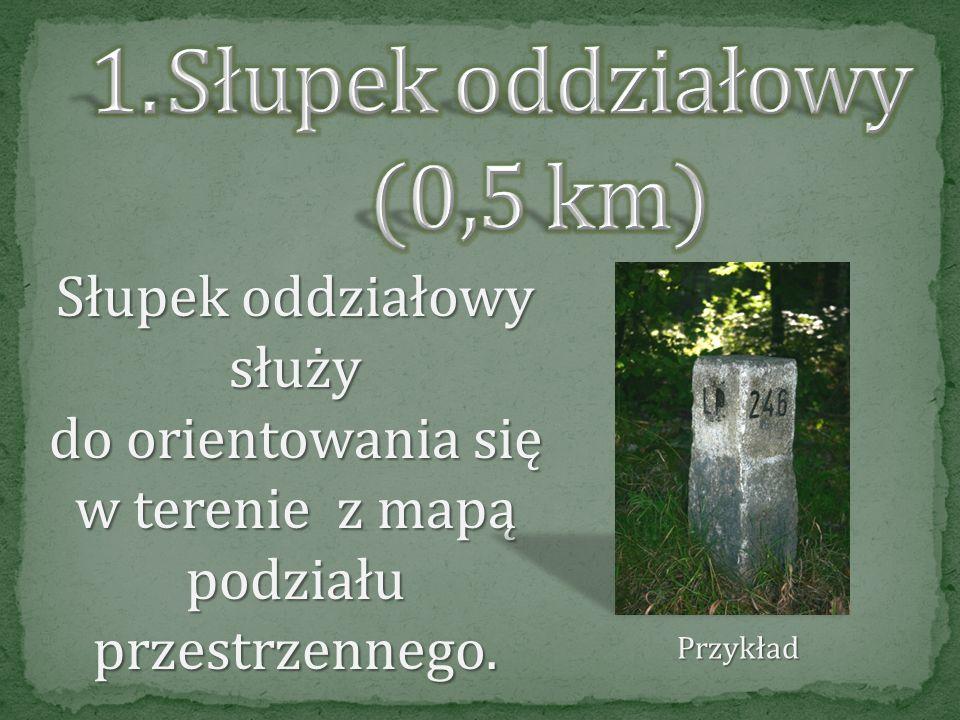 Dolina Kończaka położona jest w Leśnictwach Kiszewko i Długibród. Trasa ścieżki prowadzi łatwo dostępnymi drogami wzdłuż strumienia Kończak. Obok park