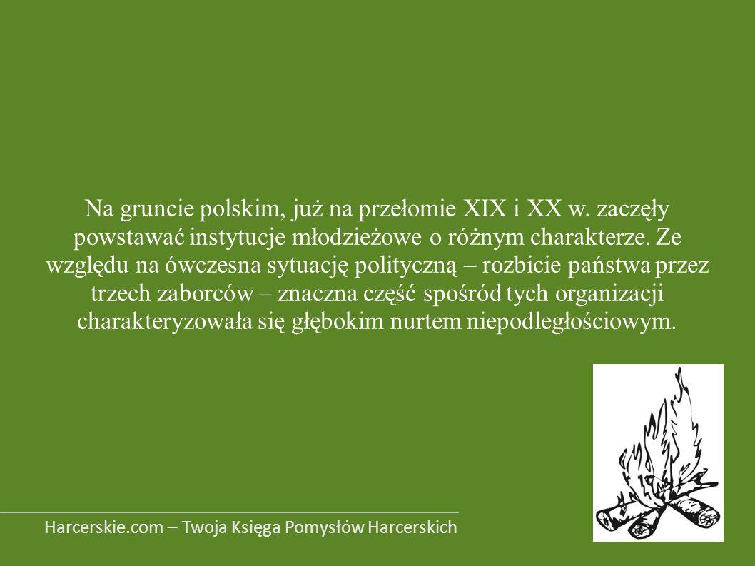 Na gruncie polskim, już na przełomie XIX i XX w. zaczęły powstawać instytucje młodzieżowe o różnym charakterze. Ze względu na ówczesna sytuację polity