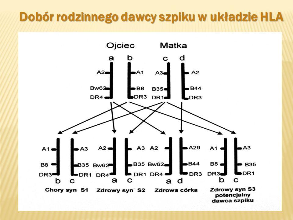 Transplantacje u dorosłych i u dzieci Klinika Hematologii i Transplantologii SUM CIC 428 Dolnośląskie Centrum Transplantacji Komórkowych we Wrocławiu CIC 538