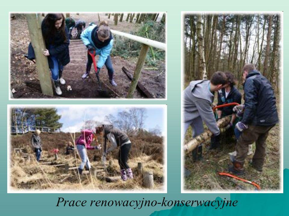 Prace renowacyjno-konserwacyjne