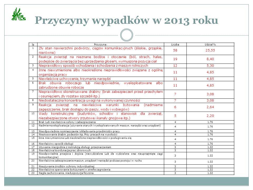 Przyczyny wypadków w 2013 roku lpPrzyczyna:LiczbaUdział % 1 Zły stan nawierzchni podwórzy, ciągów komunikacyjnych (śliskie, grząskie, nierówne) 5825,5