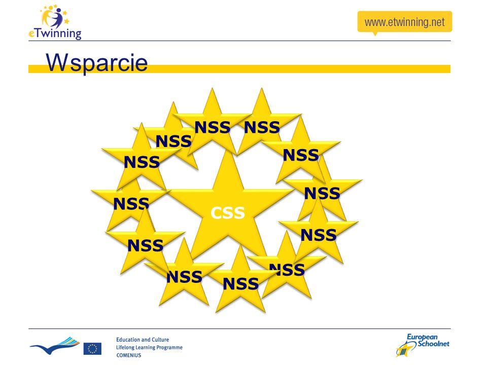 CSS NSS Wsparcie