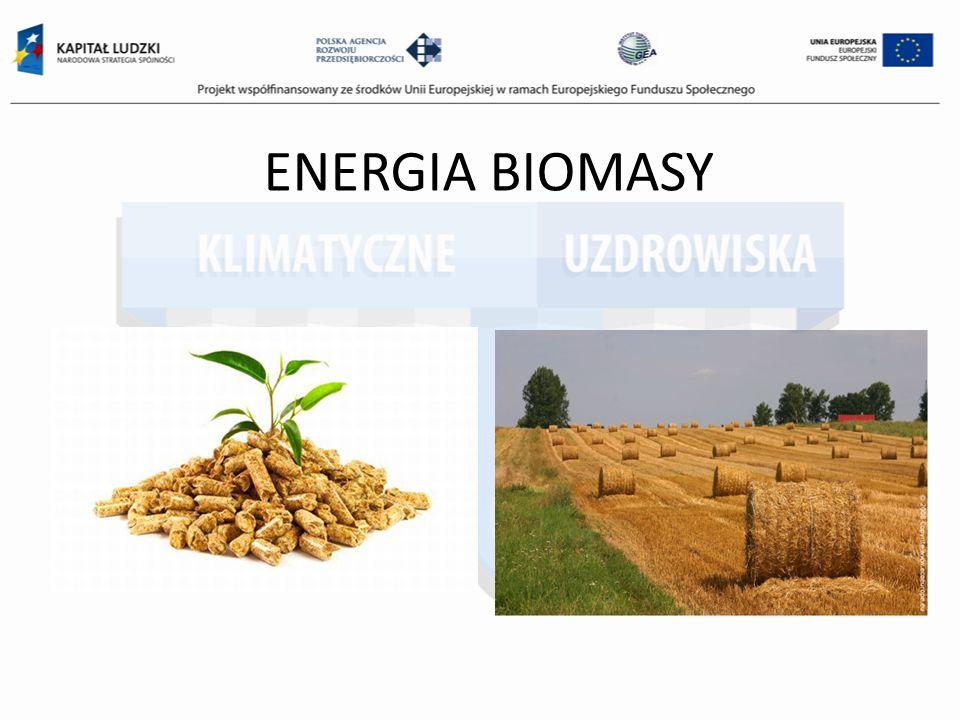 ENERGIA BIOMASY
