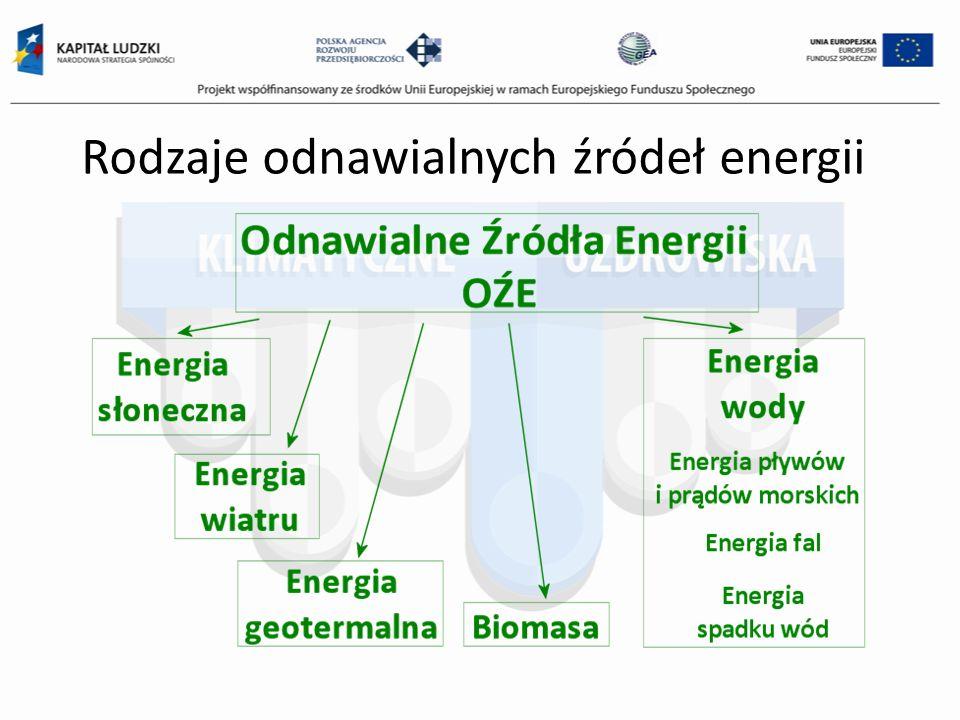 Biomasa to substancje pochodzenia roślinnego lub zwierzęcego, które ulegają biodegradacji, pochodzące z produktów, odpadów i pozostałości z produkcji rolnej oraz leśnej, a także przemysłu przetwarzającego ich produkty, a także inne części odpadów, które ulegają biodegradacji.
