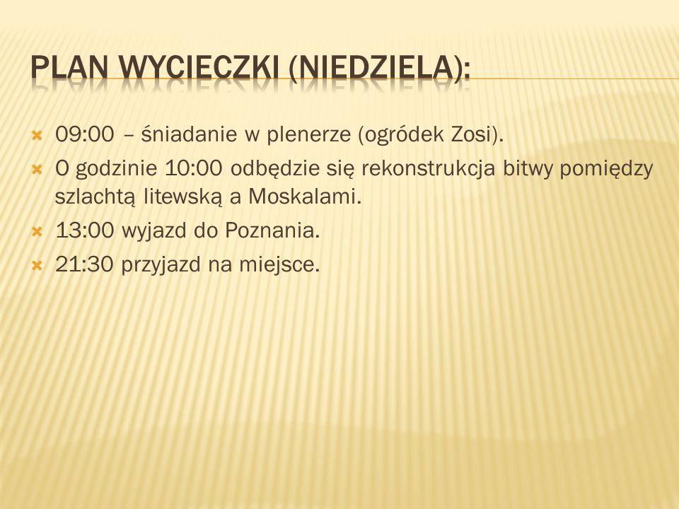 09:00 – śniadanie w plenerze (ogródek Zosi). O godzinie 10:00 odbędzie się rekonstrukcja bitwy pomiędzy szlachtą litewską a Moskalami. 13:00 wyjazd do