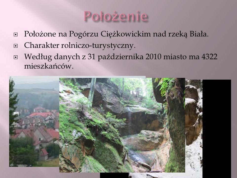 Położone na Pogórzu Ciężkowickim nad rzeką Biała. Charakter rolniczo-turystyczny. Według danych z 31 października 2010 miasto ma 4322 mieszkańców.