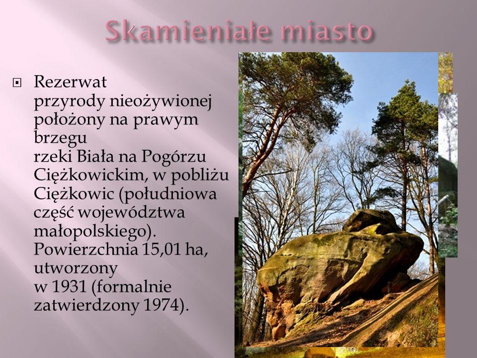 Rezerwat przyrody nieożywionej położony na prawym brzegu rzeki Biała na Pogórzu Ciężkowickim, w pobliżu Ciężkowic (południowa część województwa małopo
