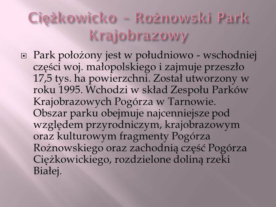 Park położony jest w południowo - wschodniej części woj. małopolskiego i zajmuje przeszło 17,5 tys. ha powierzchni. Został utworzony w roku 1995. Wcho