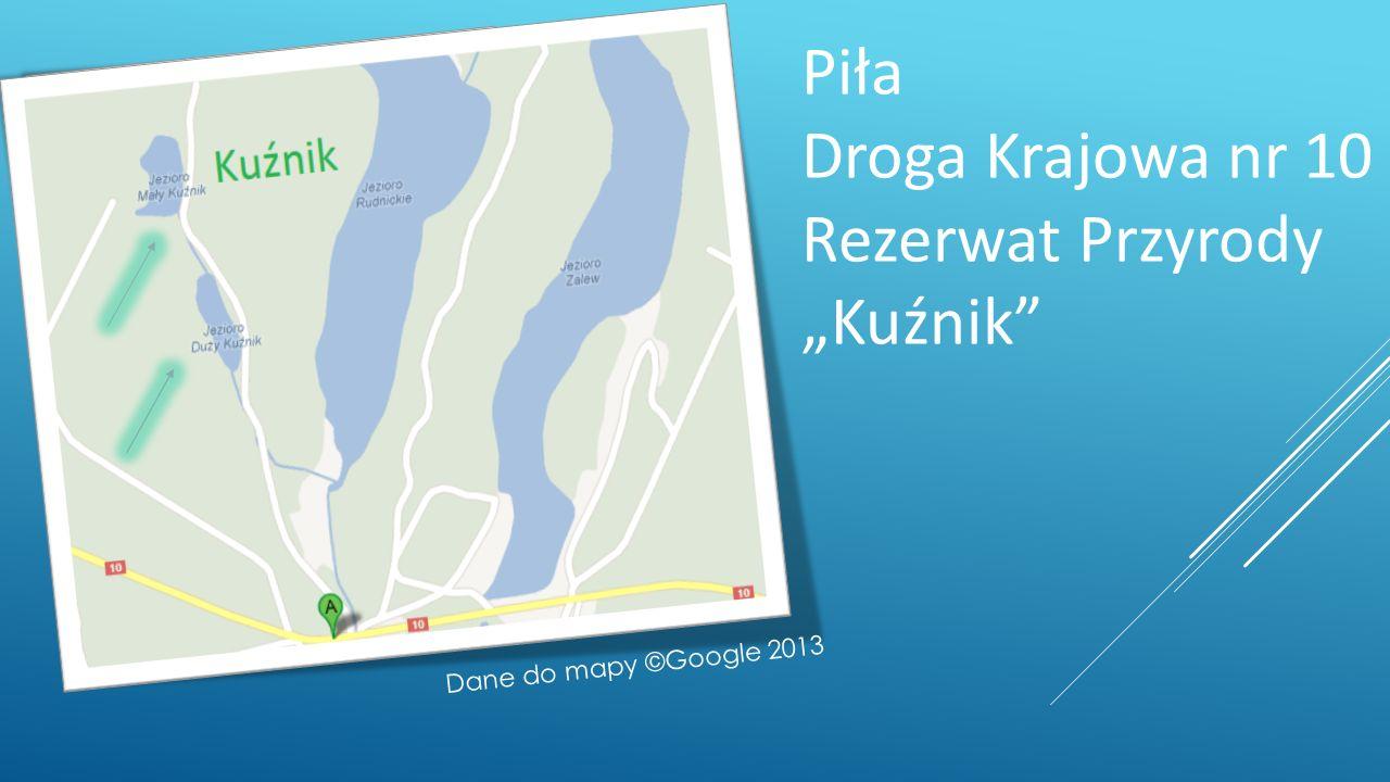 Piła Droga Krajowa nr 10 Rezerwat Przyrody Kuźnik Dane do mapy ©Google 2013
