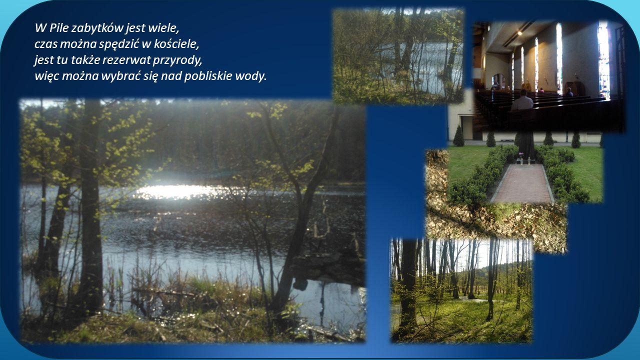 W Pile zabytków jest wiele, czas można spędzić w kościele, jest tu także rezerwat przyrody, więc można wybrać się nad pobliskie wody.