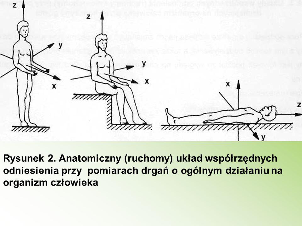 Rysunek 2. Anatomiczny (ruchomy) układ współrzędnych odniesienia przy pomiarach drgań o ogólnym działaniu na organizm człowieka