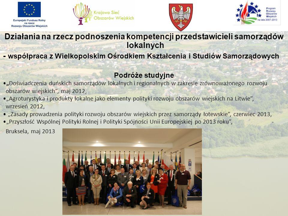 Działania na rzecz podnoszenia kompetencji przedstawicieli samorządów lokalnych - współpraca z Wielkopolskim Ośrodkiem Kształcenia i Studiów Samorządo