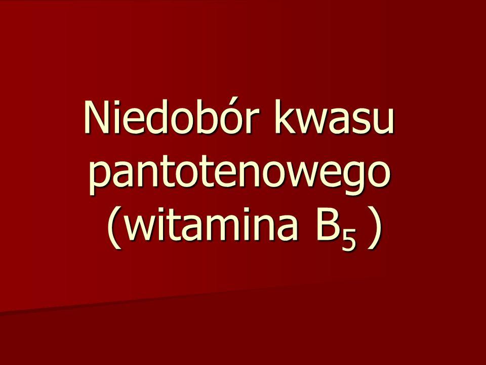 Niedobór kwasu pantotenowego (witamina B 5 )