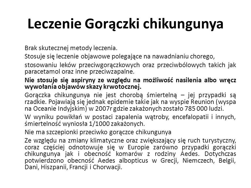 Leczenie Gorączki chikungunya Brak skutecznej metody leczenia.