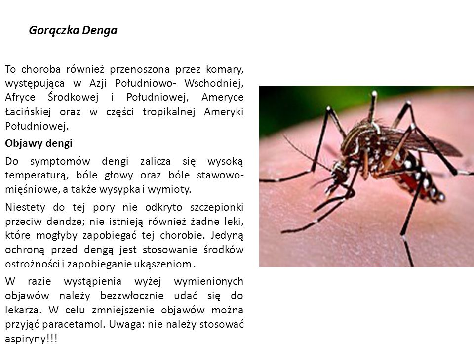 Gorączka Denga To choroba również przenoszona przez komary, występująca w Azji Południowo- Wschodniej, Afryce Środkowej i Południowej, Ameryce Łacińskiej oraz w części tropikalnej Ameryki Południowej.