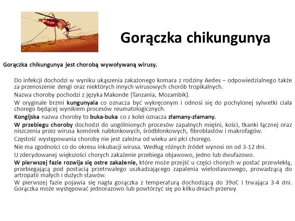 Gorączka chikungunya Gorączka chikungunya jest chorobą wywoływaną wirusy.