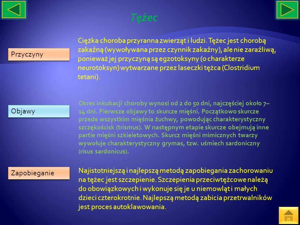 Przyczyny Objawy Zapobieganie Ciężka choroba przyranna zwierząt i ludzi. Tężec jest chorobą zakaźną (wywoływana przez czynnik zakaźny), ale nie zaraźl
