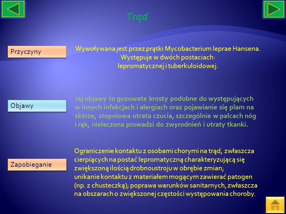 Przyczyny Objawy Zapobieganie Wywoływana jest przez prątki Mycobacterium leprae Hansena. Występuje w dwóch postaciach: lepromatycznej i tuberkuloidowe