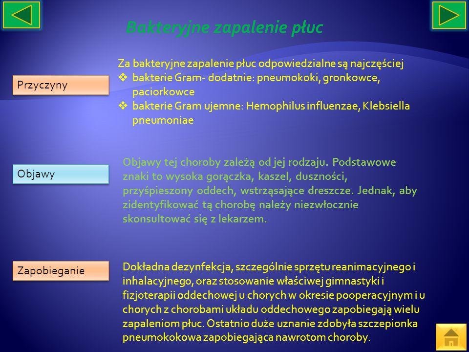Przyczyny Objawy Zapobieganie Za bakteryjne zapalenie płuc odpowiedzialne są najczęściej bakterie Gram- dodatnie: pneumokoki, gronkowce, paciorkowce b
